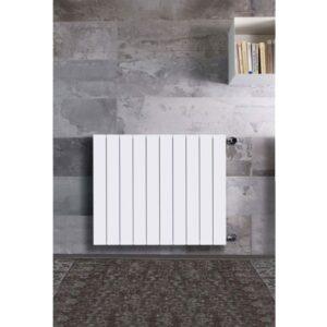 radiatore alluminio evo